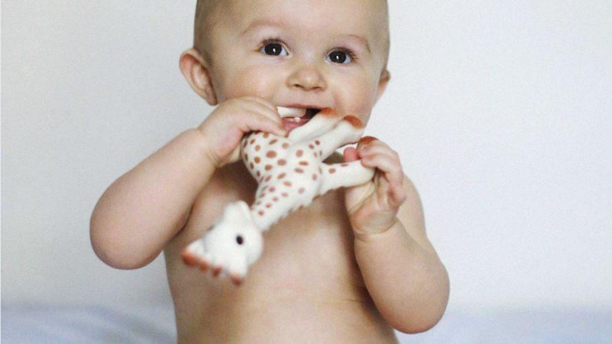 Sophie la girafe, le jouet fétiche de tous les bébés
